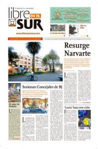 Libre en el sur - edición Noviembre 2018