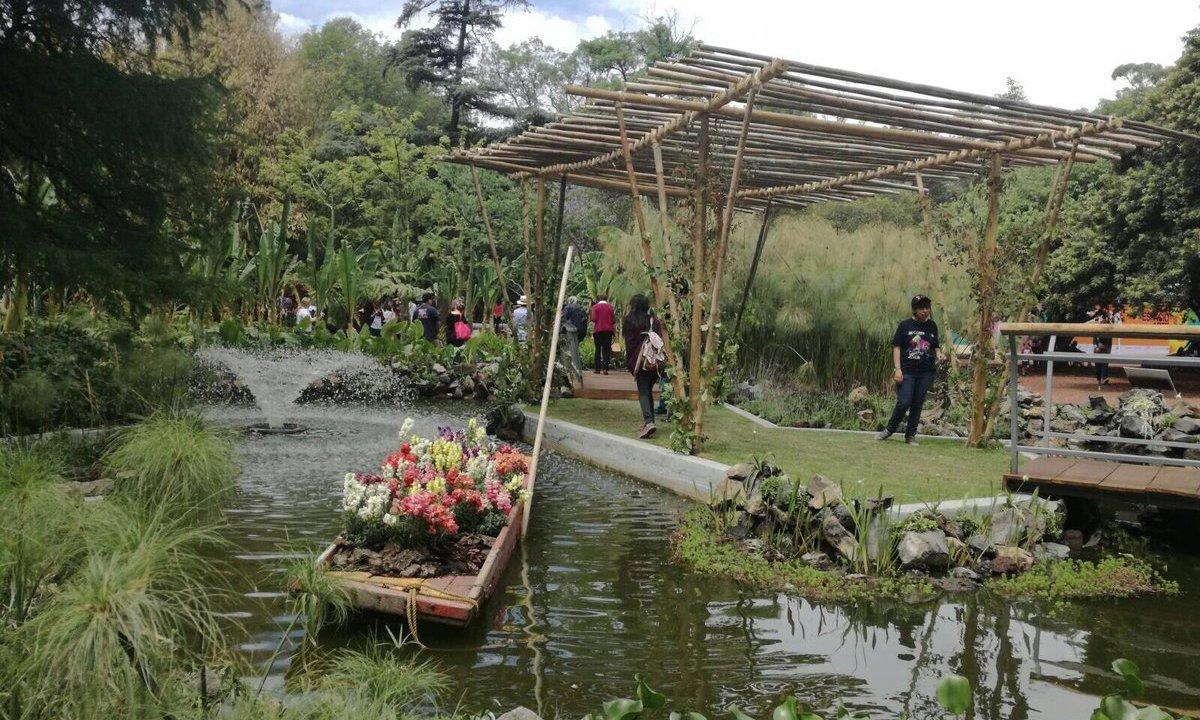 Personas caminando por el jardín botánico de Chapultepec